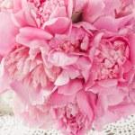Pink peony — Stock Photo #26610317