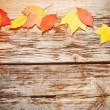 Autumn leaves on wooden background — Foto de Stock
