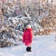 Foto de Stock  : Girl in winter park