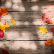 Autumn leaves over wooden background — Stock Photo #31293685