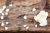 Wedding rings and rose on a wooden background — Stock Photo