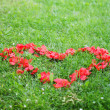 Red heart from rose petals on grass — Stock Photo