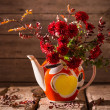 Still life with red chrysanthemum — Stock Photo