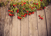 Dogrose with leafs over Wooden Background — Stock Photo
