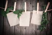 Medicine herbs and paper attach to rope with clothes pins on woo — Photo