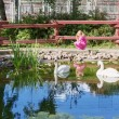 Little girl looking at the swan in zoo — Stock Photo