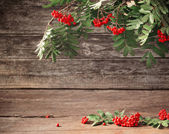 Ashberry on wooden background — Zdjęcie stockowe