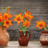 Orange flowers on wooden background — Stock Photo