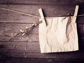 Paper attach to rope with clothes pins and branch of willow on w — Stock Photo