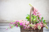 Flowers in basket on bakground old wall — Stock Photo
