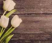 木制背景上的郁金香 — 图库照片
