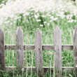 Stock Photo: Old  picket fence