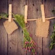 Stockfoto: Medicine herbs and paper attach to rope with clothes pins on woo