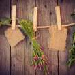 Medicine herbs and paper attach to rope with clothes pins on woo — Photo #41467485