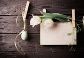 Easter egg and paper attach to rope with clothes pins and tulips — Stock Photo