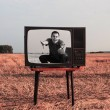 Young men with TV in summer field — Stock Photo #43015911