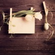 Easter egg and paper attach to rope with clothes pins and tulips — Stock Photo #43292507