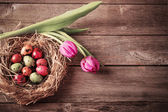 Easter egg nest with flowers on rustic wooden background — Stock Photo