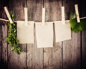 Medicine herbs and paper attach to rope with clothes pins on woo — Stok fotoğraf