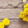 Dandelion flowers on the wooden background — Stock Photo #46830911