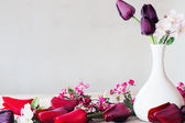 flowers on white background — Stock Photo
