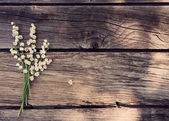 May-lily on wooden background — Stock Photo