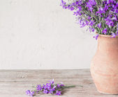 Bell-flower in jug on wooden table — Stock Photo