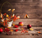 Autumn still life with apples and berries — Stock Photo