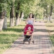 Happy young mother with baby in buggy walking in park — Stock Photo #50370537