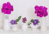 Flowers in vases on old white background — Stock Photo