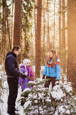 Family chooses a Christmas fir forest — Foto Stock