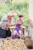 Grandmother and granddaughter with onions — Stock Photo