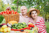 Elderly couple with vegetables outdoor — Stock Photo