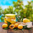 Fresh and canned peaches in the background of nature — Stock Photo #12118879