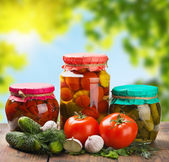 Canned and fresh vegetables on the background of nature — Stock Photo