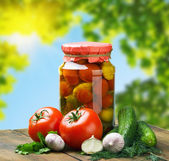 Canned vegetables and fresh against the backdrop of nature — Stock Photo