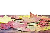 Otoño hojas esparcidas en el suelo de madera i — Foto de Stock