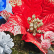 Red Poinsettia, Christmas Flower decoration — Stock Photo