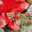 Red Poinsettia Christmas Flower decoration — Stock Photo