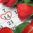 Roses lay on calendar with date of February 14 Valentine — Stock Photo #18037477