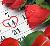 Roses lay on the calendar with the date of February 14 Valentine — Stock Photo