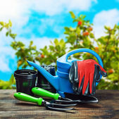 Garden tools lying on a wooden table — Stock Photo