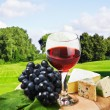 Glass of red wine with grapes - Stock Photo