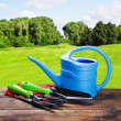 Gardening equipment and tools   — Stock Photo