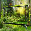 Stock Photo: Forest Life shows on TV screen