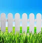 Garden fence and green lawn — Stock Photo