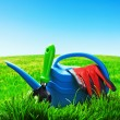 Garden tools on a lawn — Stock Photo