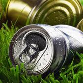 Skräp på gräset — Stockfoto