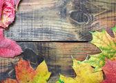 осенние листья на старый деревянный — Стоковое фото