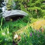 starý čínský most v parku mon repos, vyborg, Rusko — Stock fotografie